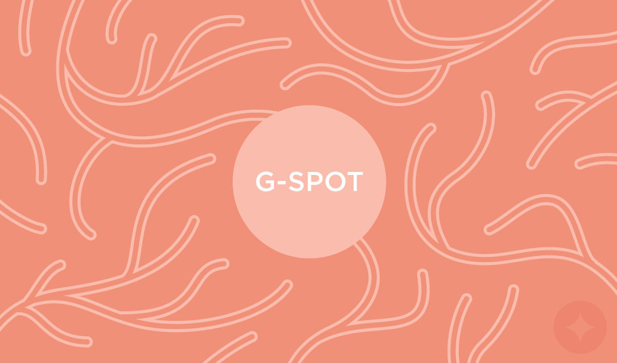 The G-Spot isn't a myth, it does exists and our anatomy guide teaches you how to find the g-spot in women.