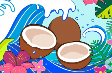 Coconut Oil as Lube: A 101 Guide